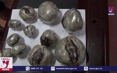 Lào Cai liên tiếp triệt phá 2 đường dây mua bán ma túy lớn