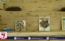 ''Ngôi nhà sách'' miễn phí, truyền cảm hứng học tiếng Anh cho trẻ