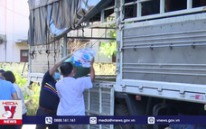 Bình Định hỗ trợ thực phẩm cho thành phố Hồ Chí Minh
