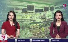 Hà Nội: Hàng hóa tại các chợ, siêu thị vẫn dồi dào