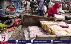 Ngư dân gặp khó do giá hải sản xuống thấp