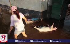 Trung Quốc có nguy cơ bùng dịch sau lũ lụt