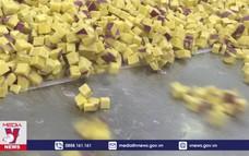 Doanh nghiệp Lâm Đồng vừa phòng dịch, vừa sản xuất