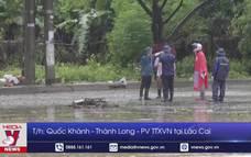 Mưa lớn gây ngập cục bộ ở Lào Cai