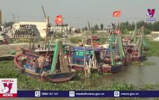 Ninh Bình khẩn trương sắp xếp tàu thuyền về neo đậu
