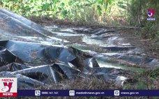 Phạt tiền 450 triệu đồng hai cơ sở chăn nuôi gây ô nhiễm môi trường