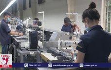Thương mại Việt Nam-EU tăng trưởng mạnh sau một năm thực thi EVFTA
