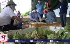Quảng Ninh hỗ trợ nông dân tiêu thụ na dai