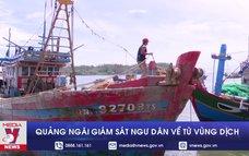 Quảng Ngãi giám sát ngư dân về từ vùng dịch