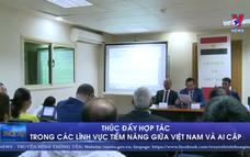 Thúc đẩy hợp tác trong các lĩnh vực tiềm năng giữa Việt Nam và Ai Cập
