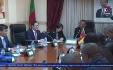 Phó Thủ tướng Vương Đình Huệ thăm và làm việc tại Cameroon