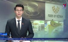 Việt Nam dự Hội chợ nhập khẩu quốc tế Trung Quốc CIIE 2019