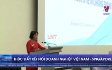 Thúc đẩy kết nối doanh nghiệp Việt Nam - Singapore