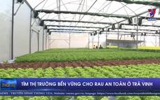 Tìm thị trường bền vững cho rau an toàn ở Trà Vinh