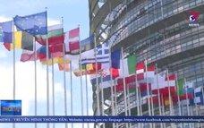 Nghị viện châu Âu sẽ bỏ phiếu thông qua EVFTA