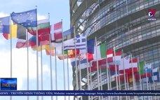 Nghị viện châu Âu phê chuẩn EVFTA