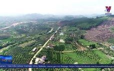 Bắc Giang nhân rộng mô hình thôn nông thôn mới kiểu mẫu
