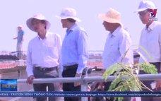 Tiền Giang đưa nước ngọt về vùng Đồng Tháp Mười