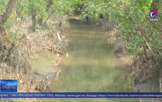 Vĩnh Long cấp nước ngọt đến các vùng hạn mặn