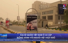 Đại sứ quán Việt Nam ở Ai Cập đồng hành với người Việt vượt khó