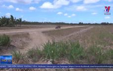 Nông dân Bến Tre ồ ạt bán đất mặt ruộng