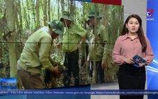 Hơn 43.500 ha rừng Cà Mau ở mức dự báo cháy cấp cao nhất