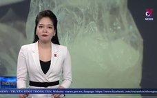 Tây Ninh bắt các đối tượng mua bán, tàng trữ trái phép ma túy