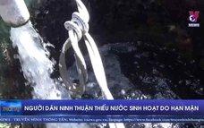 Người dân Ninh Thuận thiếu nước sinh hoạt do hạn mặn