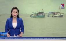 Xử lý 114 tàu cá vi phạm vùng biển nước ngoài