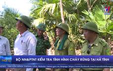 Bộ NN&PTNT đến Hà Tĩnh, kiểm tra tình hình cháy rừng