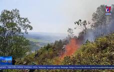 Vụ cháy rừng ở Hà Tĩnh đã được khống chế