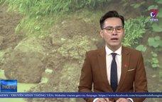 Mưa lớn kéo dài tại Lai Châu, nguy cơ sạt lở đất cao