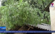 Mưa lũ gây thiệt hại gần 5 tỷ đồng ở Lai Châu
