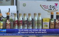 Tái sử dụng lao động Việt Nam hết hạn hợp đồng tại Hàn Quốc