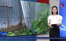 Dông lốc gây thiệt hại về nhà cửa ở Sóc Trăng
