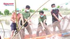 Công an tỉnh An Giang: Thu mua 30 tấn cá giúp bà con nhân dân