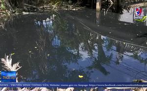 Người dân Bến Tre bức xúc vì nguồn nước sông bị ô nhiễm