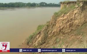 Khẩn trương khắc phục tình trạng sạt lở đê sông Lô