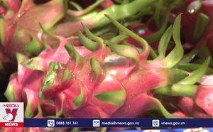 Trái cây Việt Nam rộng đường sang Mỹ