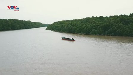 Cù lao Dung - Hòn đảo xanh trên sông Hậu
