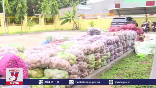 Kon Tum hỗ trợ 50 tấn nông sản tới người dân TP Hồ Chí Minh