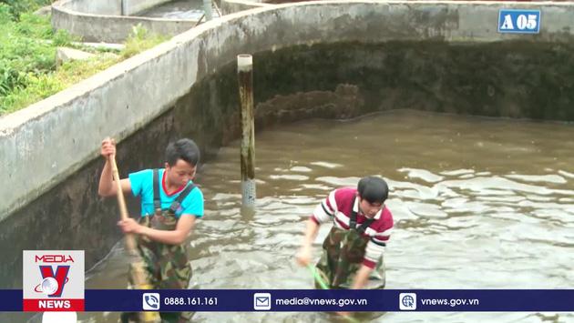 8/11 mẫu cá tầm bán tại Hà Nội và TP.HCM nhập lậu từ Trung Quốc