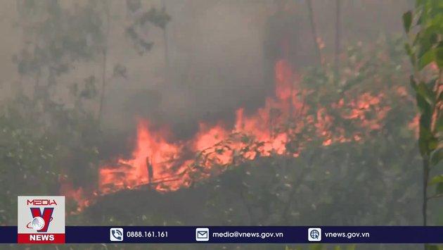 Thừa Thiên – Huế tăng cường phòng chống cháy rừng
