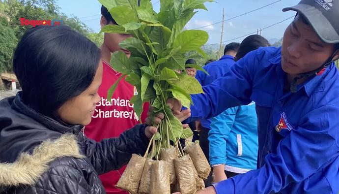 Vườn cây hạnh phúc xanh: Trao tặng 15.000 cây xanh cho bà con vùng lũ